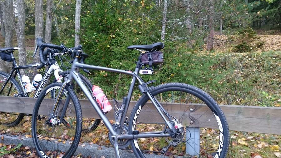 Dags för 60 km i skogen