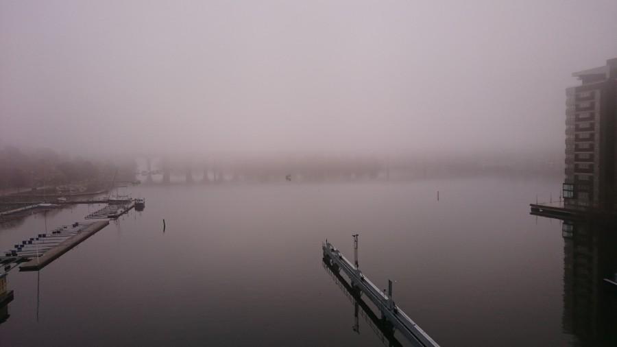 Vacker dimmig morgon